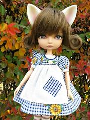 Sunny Thanksgiving4 (annesstuff) Tags: thanksgiving autumn leaves doll korea lila bjd soom fashiondoll abjd catears balljointeddoll diablesse madamealexander asianballjointeddoll annesstuff