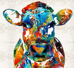 Colorful Cow Art - Mootown - By Sharon Cummings (BuyAbstractArtPaintingsSharonCummings) Tags: ranch baby cute college sports animal animals basketball kids children cow milk football midwest colorado funny colorful long texas cattle cows farm country nursery rustic bull bulls universityoftexas popart longhorns pasture pastures longhorn farmer wyoming horn dairy veterinarian rancher calf nba bovine whimsical ranching calves dairyfarm collegefootball texaslonghorns animalprints dairycow sharoncummings countrydecor