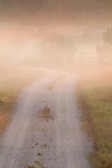 Morning Road (Toni Kaarttinen) Tags: road morning summer mist nature beautiful misty fog sunrise suomi finland dawn countryside finnland country foggy finlandia フィンランド finlande finlândia finnország finlanda finlàndia финляндия finnishsummer finnlando فنلندا