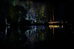 The Enchanted Forest - Pitlochry 2014 (marie137) Tags: show wood trees light water forest out fire doors thistle scottish award feature enchanted winning pitlochry elemental faskally marie137