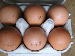 O'Dwyers Greenfield Foods 6 Large Eggs 1.40 01112014 20-10-2014 - Box Egg Weights (Lord Inquisitor) Tags: brown foods large eggs greenfield hen eggcarton eggbox odwyers heneggs 20102014 eggweights 01112014 140
