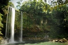 misol ha waterfalls (karolajnat) Tags: mountain green azul mexico agua aqua pyramid palm jungle waterfalls ruinas palenque chiapas mayas misolha aquaazul