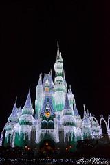 Cinderella Castle (disneylori) Tags: christmas castle disney christmaslights disneyworld christmasdecorations wdw waltdisneyworld magickingdom cinderellacastle