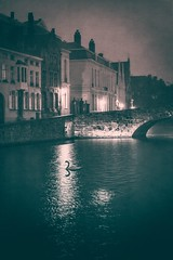 A spooky Night In Brugge (DagobaMedia) Tags: city travel pink summer house holiday streets tourism night reflections lost hotel canal alone glow belgium homeless brugge july streetlife cathederal spooky belfry citylights leanne nightlife raining flemish architecure marketsquare bruge nitelife travelphotography travelpromotion travelstock travelstockphotography simonashmore dagobamedia dagobahotelphotography dagobaphotography tourismdagoba wwwdagobamediacom