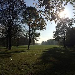 Autumn. #herbst2014 #herbst #autumn #sun #enjoy #hoorayfortoday #hooray #ignice #ignature #igtravel #natur #nature #travel #travelblog #travelingram #traveltheworld #worlderlust #magdeburg