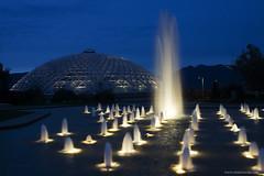 Queen Elizabeth Park (Zorro1968) Tags: fountain night vancouver lights queenelizabethpark