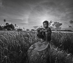 20140503-MIA_6918bw (yaman ibrahim) Tags: morning boy sunrise kid malaysia rooster sabahan maiga