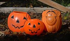 Happy Halloween, Everybody! (BKHagar *Kim*) Tags: autumn orange fall halloween leaves fence season al jackolantern pumpkins alabama athens happyhalloween bkhagar