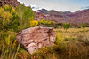 Touch of Fall in Calico Basin (J.T. Dudrow Photography) Tags: autumn landscape lasvegas nevada redrock calicobasin southernnevada redrocknationalconservationarea nevadalandscape