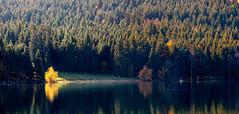 Lac du Bouchet 031 (aups83) Tags: nature automne lac auvergne volcan pêche baignade hauteloire randonnéepédestre plandeau pêcheàlamouche cayres lacdubouchet plateauvolcanique