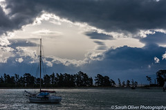 A meal with a view (SarahO44) Tags: abel bay boat cafe clouds ferry haulashore haven island marlborough moody national nelson new nz park quay shed ship sky south stepneyville storm tasman tug view wakefield yacht zealand canon 40d dramatic silhouette trees