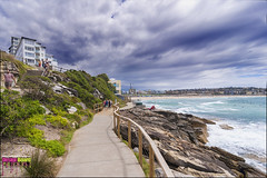 DSC_2371_X (Design Board Photography) Tags: landscapes sea bondibeach beaches designboardphotography