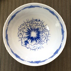 Omnivore Bowl (Don Moyer) Tags: calamityware porcelain willow omnivore bowl drawing explosion kickstarter