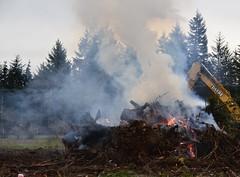 OH DEERE (shireye) Tags: ohdeere stumpburning trees stumps fire smoke comoxvalley bc britishcolumbia nikon d610 24120 ff fullframe fx