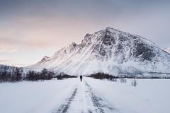 Exploring Senja, Norway (Sunny Herzinger) Tags: arctic xf23mmf14 fujixpro2 road winter norge february stayandwander norway senja mountain troms no