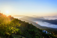 Sunrise over the Sea of Clouds (tejas.jammihal) Tags: munnar landscape sunrise clouds vibrance