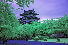 Infrared Hirosaki Castle (aeschylus18917) Tags: danielruyle aeschylus18917 danruyle druyle ダニエルルール japan 日本 infrared ir surreal 赤外線 aomoriprefecture 青森県 hirosaki 弘前市 hirosakicastle 弘前城 hirosakijō 1685mm