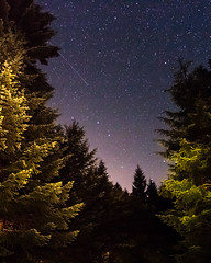 ([ raymond ]) Tags: astrophotography forest milkyway night oregon stars trees trilliumlake mg2112 comet shootingstar