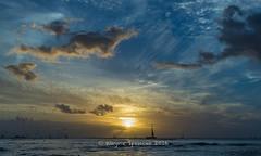 Golden Evening (barachois50) Tags: waikiki hawaii sunset