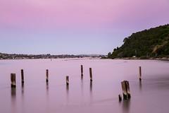 _MG_0839 Carquinez shoreline (virgmos) Tags: seascape shoreline outdoors nature bay water carquinezregionalshoreline ebparksok sunset longexposure pink sky canon