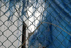Blue...ripped (Beeke...) Tags: abstract backalley blue white junk ripped fabric steveston bc canada fishing