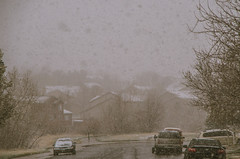 094/365 - Ahh, Springtime.. (laureanophoto) Tags: project3652017 snow storm cold ice freeze 365 spring