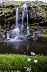 b-20 (xanfer) Tags: augas efectoseda fervenza flores paseodorato