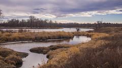 Not quite spring (kensparksphoto) Tags: alberta bowriver calgary fishcreekprovincialpark reflection