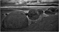 Moeraki Boulders Exposed (Rolf Siggaard) Tags: 12mm beach captureone closeup clouds coast coastline environmental evening fujixt2 landscape mirrorless outdoors overcast rock sand sea shapes water ngc