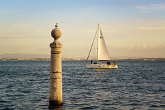 Lisbon (Pete Noah) Tags: lisbon portugal minimalism lessismoore ocean sailboat seagull column