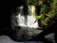 HOGARTH FALLS at Strahan (Lani Elliott) Tags: nature naturephotography scene scenic view water waterfall waterfalls flowing australia tasmania strahan hogarthfalls light bright