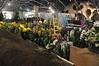 2017-03-08_0276i_waldor (lblanchard) Tags: 2017flowershow displaygarden waldor