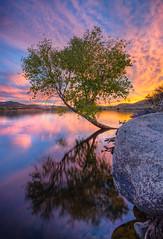 Watson-2428_29_30_tonemapped (Michael-Wilson) Tags: sunset arizona sky reflection tree clouds sunrise az explore tranquil prescott michaelwilson michaelwilsoncom
