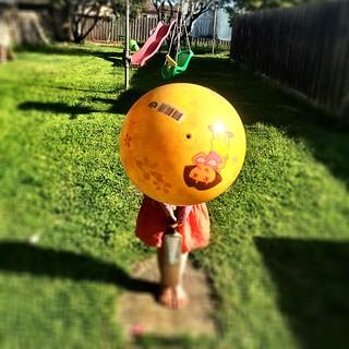 365/279 • bowling • #2014_ig_279 #backyard #cricket #ball #4yo #sunshine #lateafternoon #morningtonpeninsula