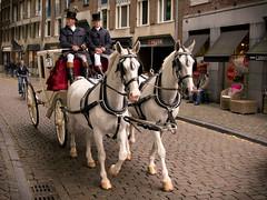 Wedding (Matt H. Imaging) Tags: wedding horse maastricht carriage sony tamron slt a55 sonyalpha slta55v tamron18270pzd matthimaging