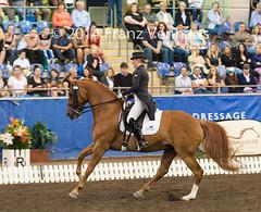 141025_2014_AUS_D_Champs_GPFS_5412.jpg (FranzVenhaus) Tags: horses performance sydney australia competition event nsw athletes aus equestrian riders dressage siec