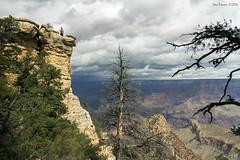Grand Canyon - risky selfie (SteveProsser) Tags: arizona grandcanyon darwin grandviewtrail