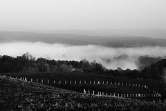 misty morning.........../I/.......... (Ozlem Acaroglu(www.ozlemacaroglu.com)) Tags: mist misty fog turkey landscape pentax trkiye foggy turquie sis turkeytravel tamron karadeniz turchia turkei kerpe siyahbeyaz minimalphotography mistiness leefilter kandra lee09ndgradsoft turkeylandscape lee09ndsoft doalyounlukfiltresi kandrakerpe trkiyekandra