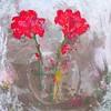 Blóm í krukku/Flowers in a jar (asben7) Tags: flowers red rautt blóm hanakambar