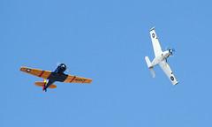 Beech B45 (T-34A) Mentor N134FA and North American T-6G Texan N1364J (ChrisK48) Tags: airplane aircraft 1954 beechcraft 54 texan at6 1951 t6 snj dvt phoenixaz t34 021 kdvt b45 northamericant6g t34a phoenixdeervalleyairport n1364j n134fa mm53655 cncg21 fach173