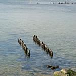 Ostseestrand bei Thiessow auf Rügen (3) thumbnail