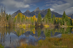Grand Teton Natioal Park (P. Oglesby) Tags: autumn reflections grandtetonnationalpark thehighlander godlovesyou schwabacherslanding