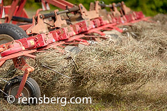 Tractor tedding hay in Sudlersville, Maryland, USA (Remsberg Photos) Tags: usa tractor work farm harvest maryland machinery shore ag farmer hay gps industrious sudlersville tedding
