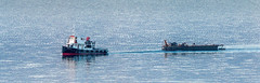 The old tug (Tom Dalhoy) Tags: lake boat log timber nostalgic tug tow mjsa svat