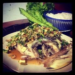 ได้เมนู ปลานิลนึ่งลุยสวน อยากกินปลาช่อนลุยสวนแต่กำลังควบคุมอาหาร เป็นปลานิลนึ่งละกัน