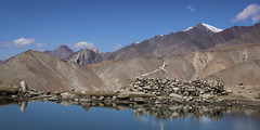 Ladakh 2014 - la valle de la Markha  cheval (vio trieves) Tags: montagne trek lacs himalaya ladakh markha