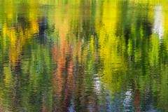 Autumn Reflection I (Pauline Brock) Tags: autumn abstract reflection fall nature colors river colours