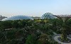 Gardens By The Bay (a.rutherford1) Tags: city urban gardens digital nikon singapore asia forsale tropical futuristic touristattraction outdoorart d300 republicofsingapore gardensbythebay fnumberf9 modelnikond300 exposuretime1160sec photosfromflickrgmailcom lens1224mmf4040 isospeedratings200