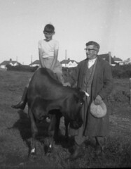 Not A Pony Ride (theirhistory) Tags: boy horse man field grass hat shirt cow child coat riding pony shorts rider wellies