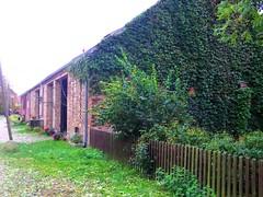 2014-10-20 Kremmen 14 (dks-spezial) Tags: brandenburg oberhavel scheunenviertel kremmen